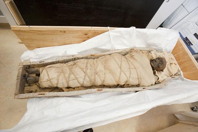Один из умерших, как сообщается, был ростом 2 м 13 см у некоторых мумий сохранились зубы