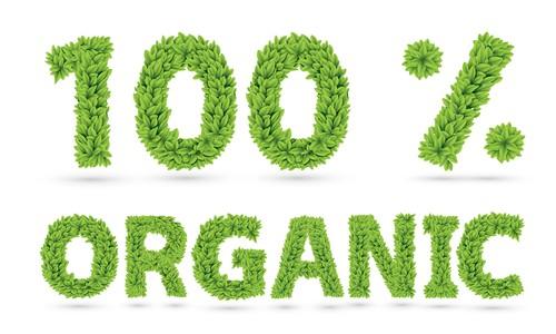 10 Reasons To Buy Organic