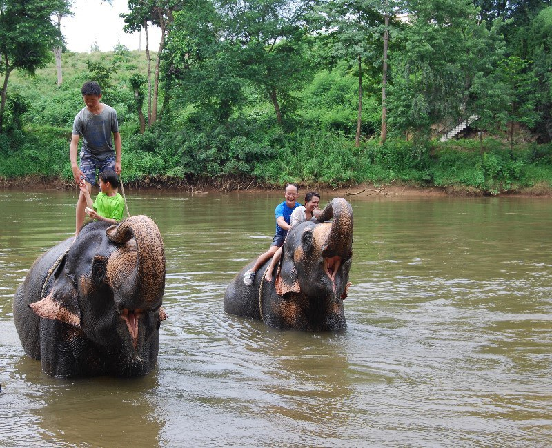 United employee, Allen Chang and family on elephants in the river.