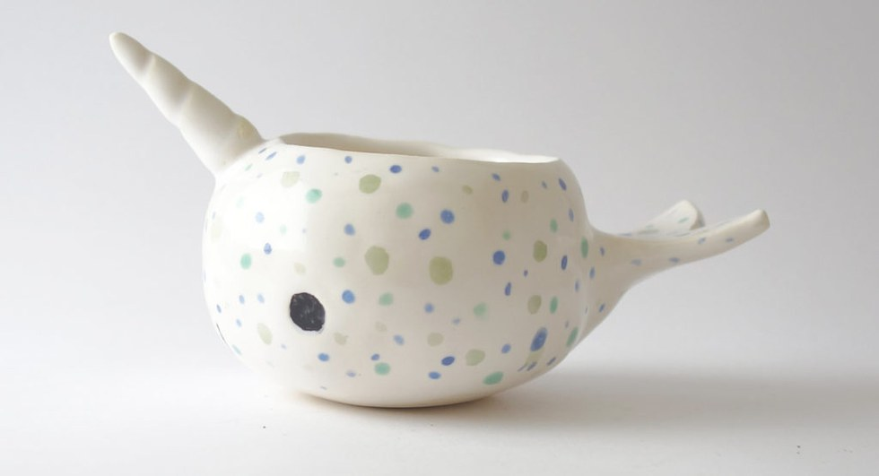 What succulent wouldn't look better in a narwhal pot?