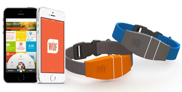 Picture of wuf smart dog collar.