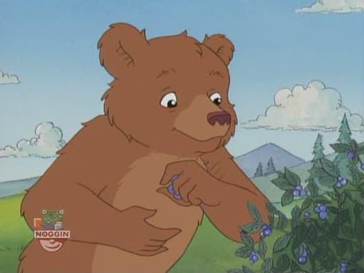 Little Bear Tv Show – Fondos de Pantalla