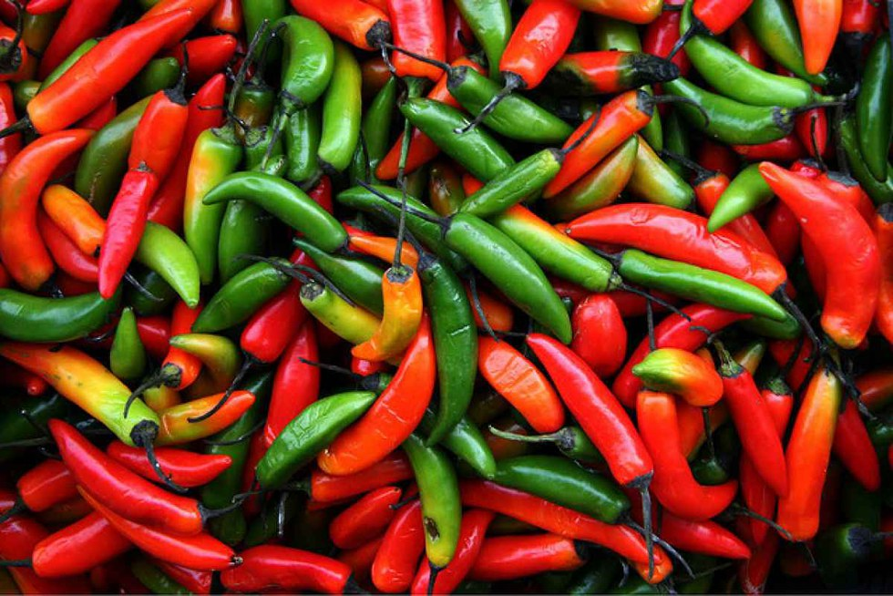 Can You Eat Spicy Food When Sick