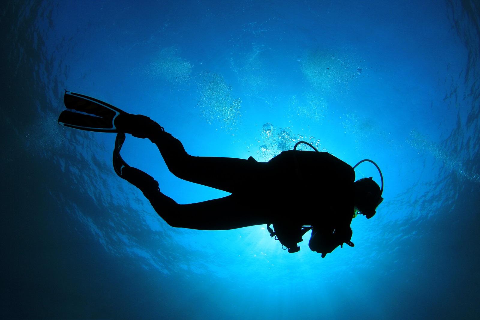 scuba diver pictures