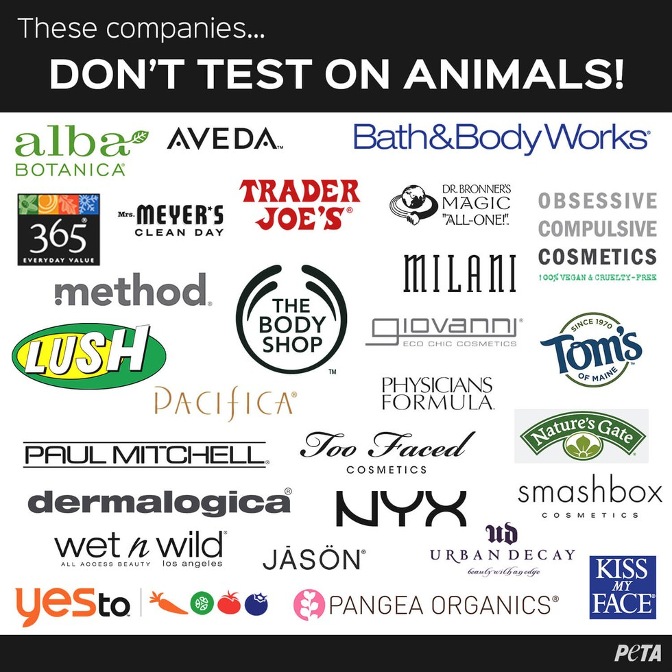 the reasons animal testing should be