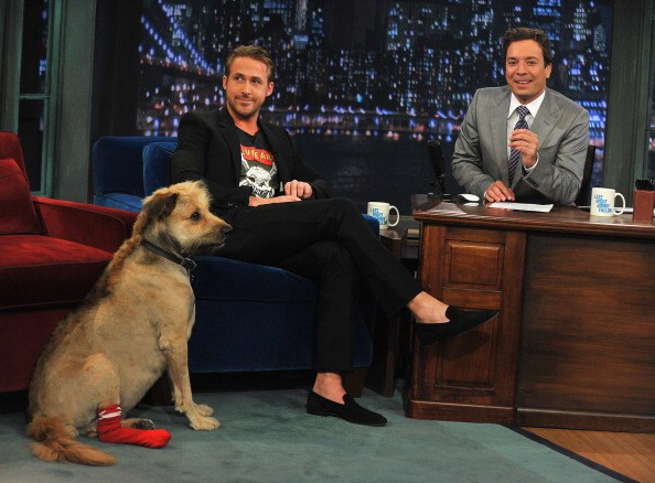 Ryan Gosling Melts Hearts Everywhere Remembering His Late Dog George