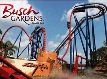 Sheikra (Busch Gardens)