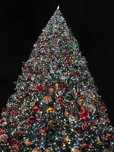 whether its decking the halls or driving around looking at christmas lights christmas decorations are undoubtedly one of the greatest parts of christmas - Why Christmas Is The Best Holiday