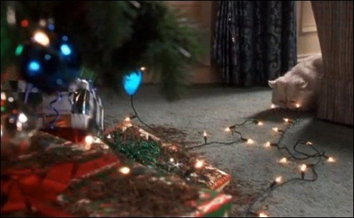 christmas vacation cat - Christmas Vacation Scenes