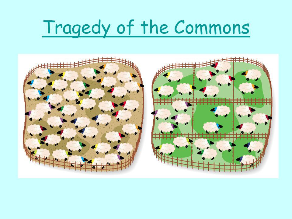 the tragedy of the commons out of The tragedy of the commons is an environmental economic phenomenon where an economic those questions are played out in a dance with insect-like devils but.