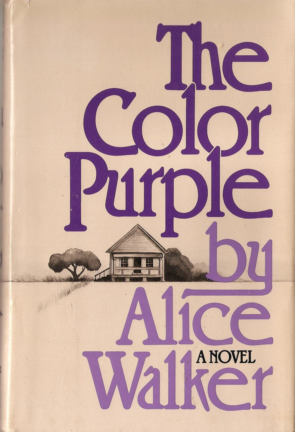 the color purple by alice walker summary Maybe one of the reasons why alice walker's colour purple assumed the phenomenal state that it did assume, in american literature is because in spite of summary of events in the book: at first when shug avery comes to celie's house, she is mean to her (you sure is ugly) were the first words that.