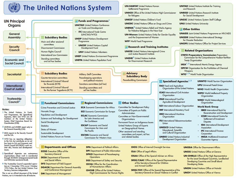 the formation and roles of the united nations The role of international organisations in world politics the changing roles and duties of of the united nations as an international institution is.