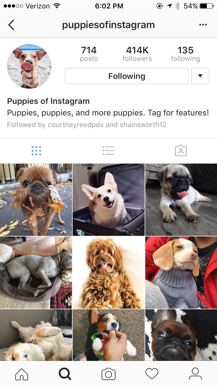 1000 Best Instagram Captions Good, Funny