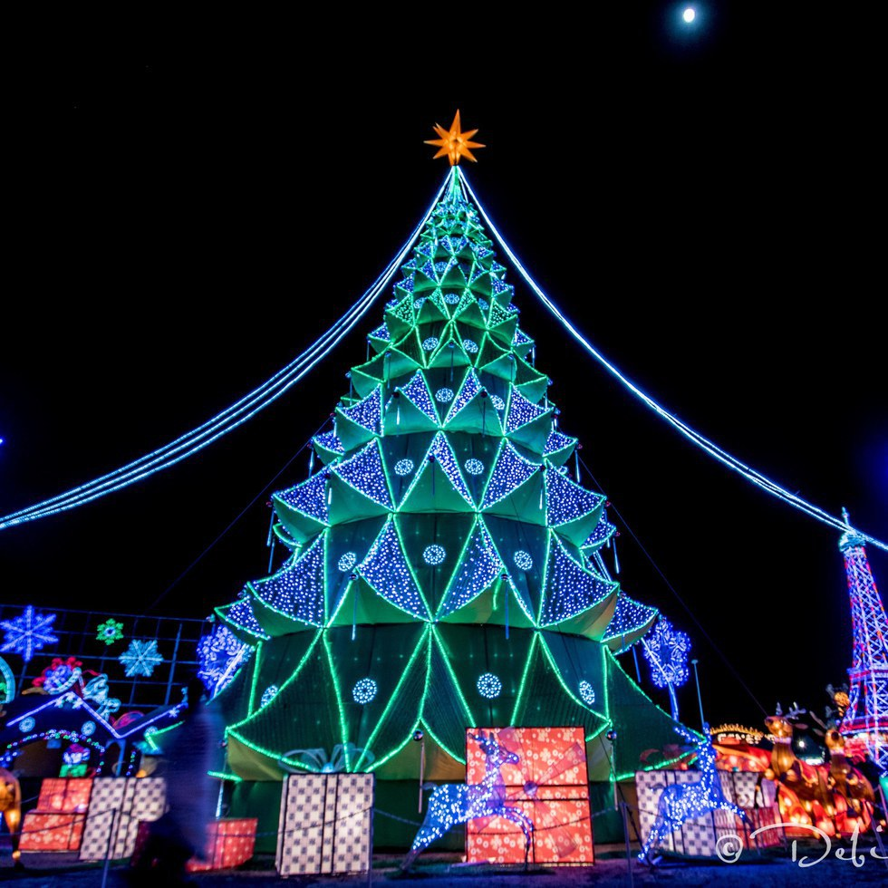 Top 5 Holiday Destinations In Texas