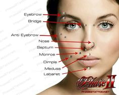 Ultimate Guide On Piercings From Placement To Aftercare