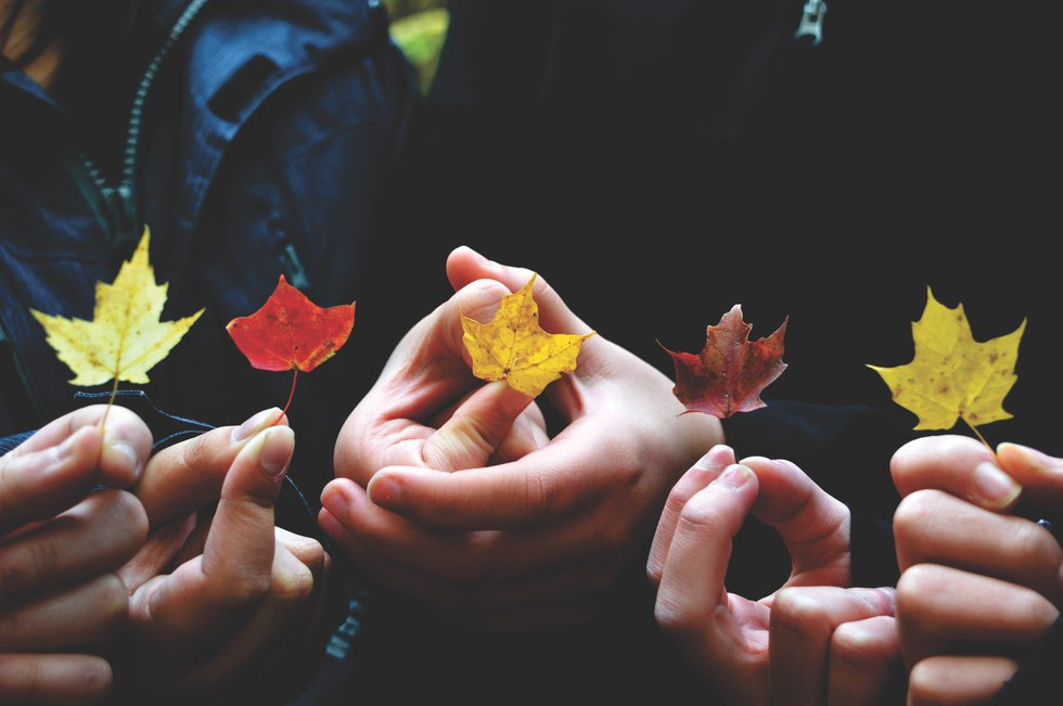 13 Of The Best Literary Quotes About Autumn