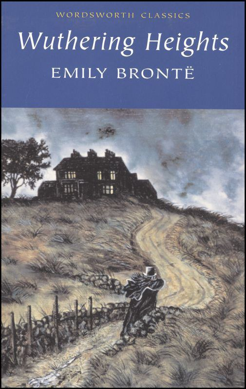 two houses in emily brontes wuthering heights essay