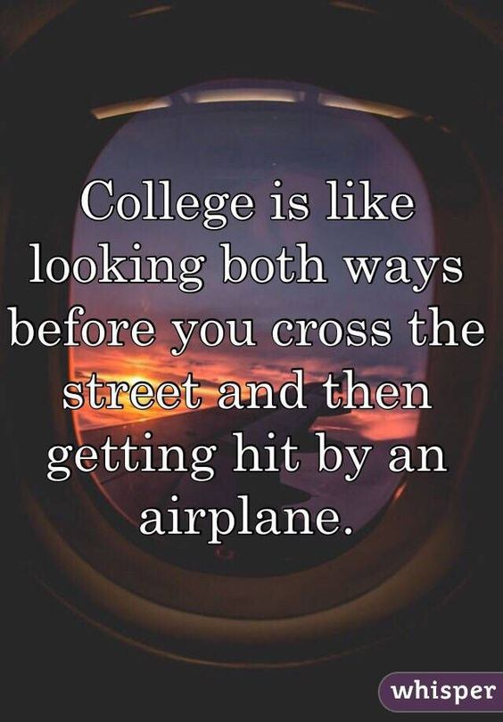 The Most Relatable College Quotes Beauteous Relatable Quotes