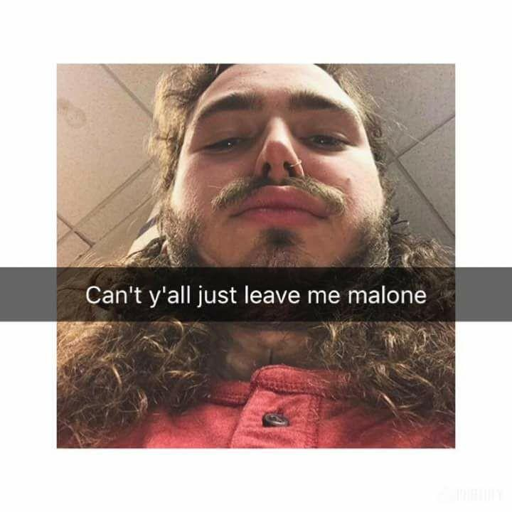 Post Malone Clean: The 15 Best Post Malone Memes To Have Graced The Internet