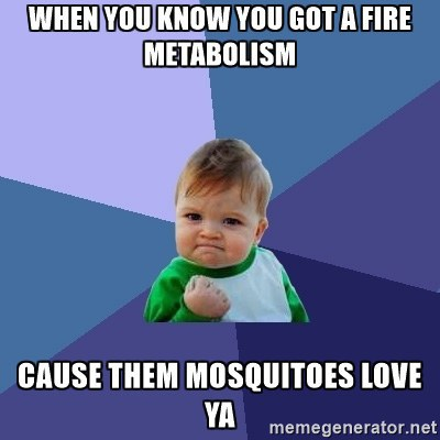 Gaseous Attraction A Mosquito S Love Story