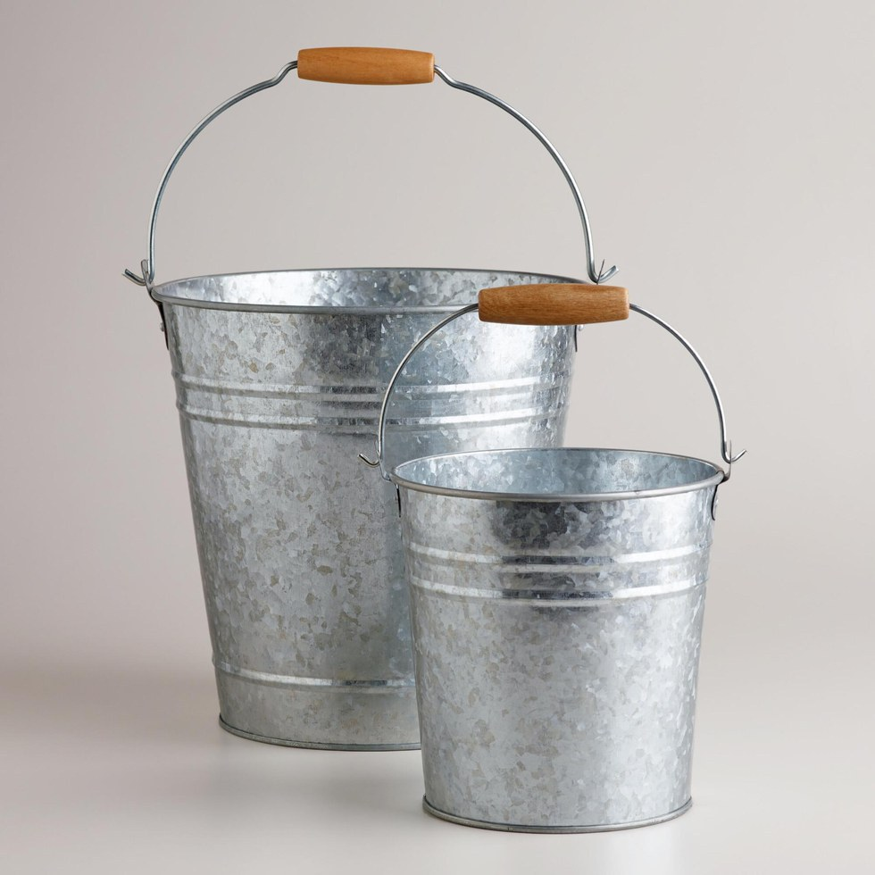 metal bucket full of kittens