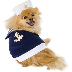 4. Ghost  sc 1 st  Odyssey & 20 Halloween Costume Ideas for Dogs