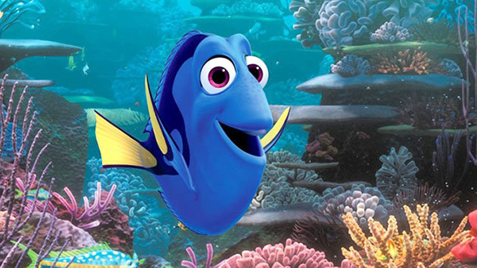 The 25 Best Finding Nemo Quotes In Honor Of Finding Dory