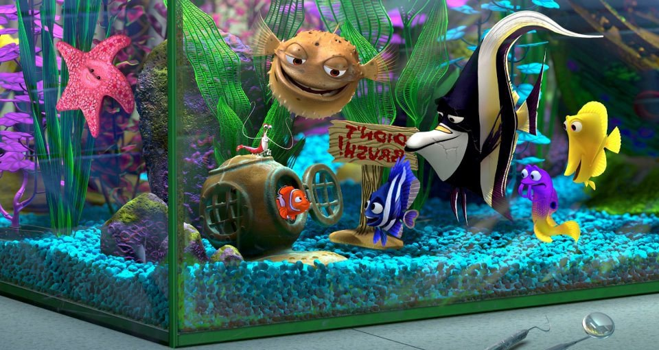 A quick biological comparison of finding nemo to finding dory for Finding dory fish tank