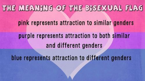 9 Queer Pride Flags That You Probably Didnt Know About