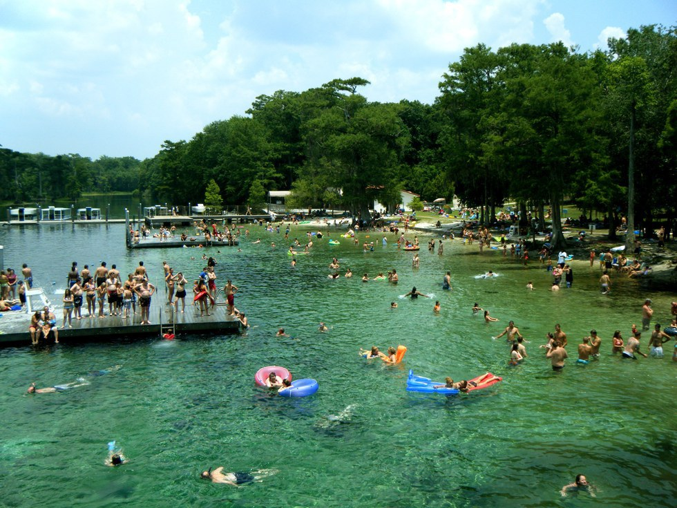 wakulla springs chat sites Save see tripadvisor's wakulla springs, florida panhandle hotel deals and special prices on 30+ hotels all in one spot find the perfect hotel within your budget with reviews from real travelers.