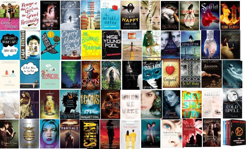 Love Popular Young Adult Books