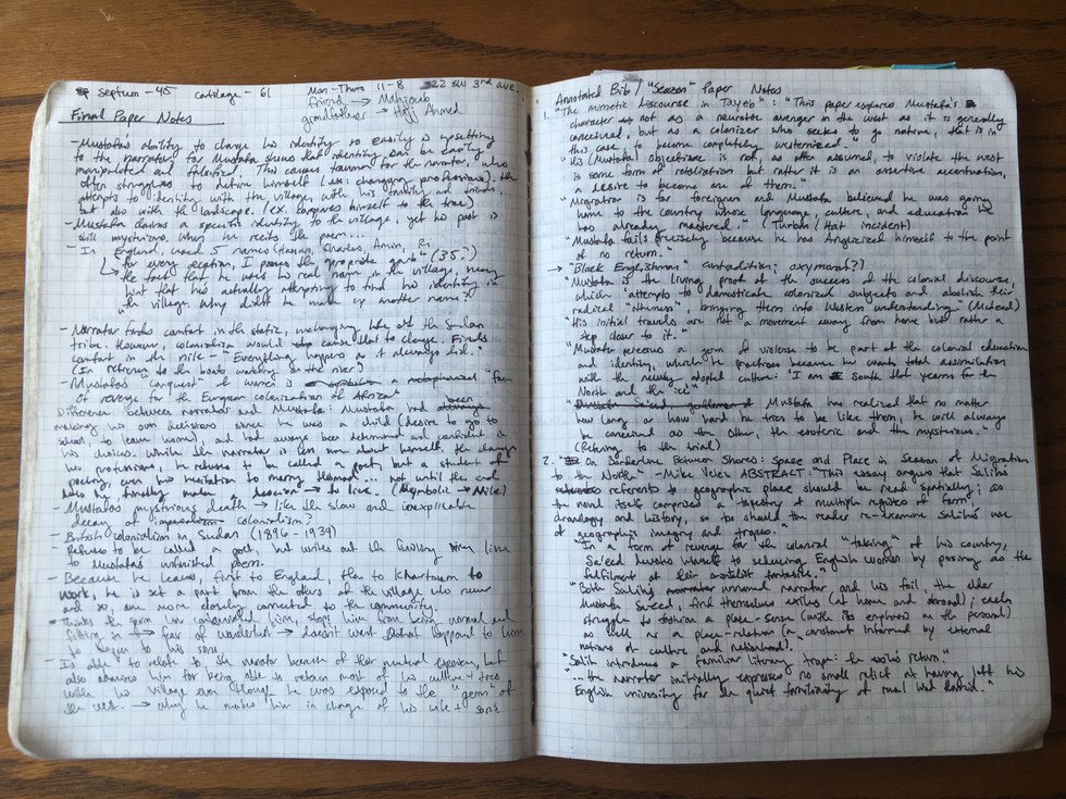 write my essay please