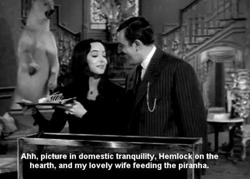 Morticia And Gomez Are Couple Goals