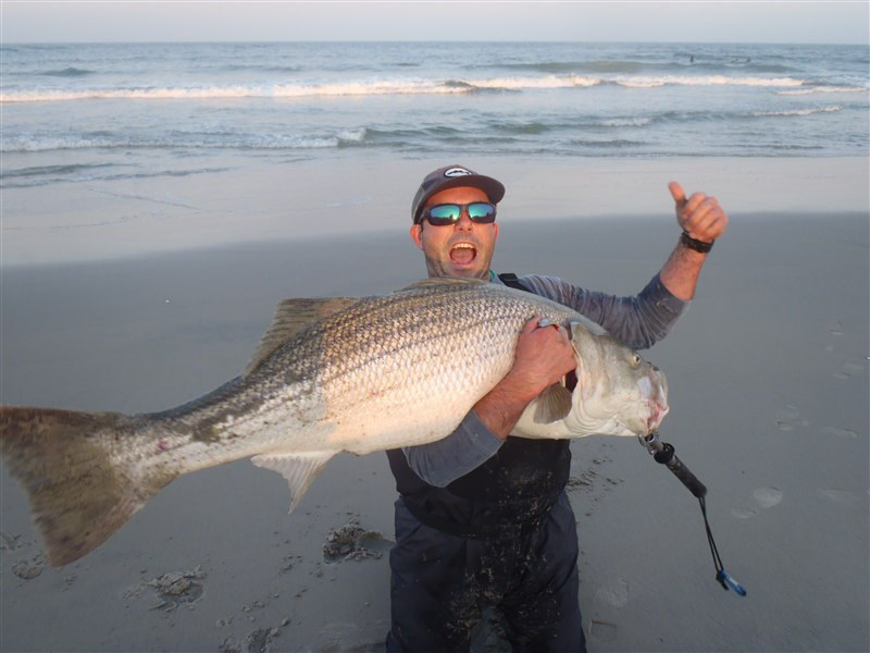 16 types of people you see at the beach for Bass fly fishing setup