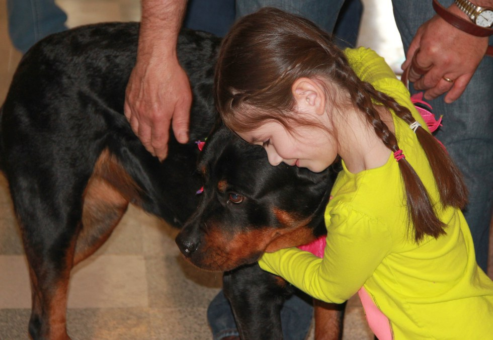 Image result for rottweiler dog, they like hugs
