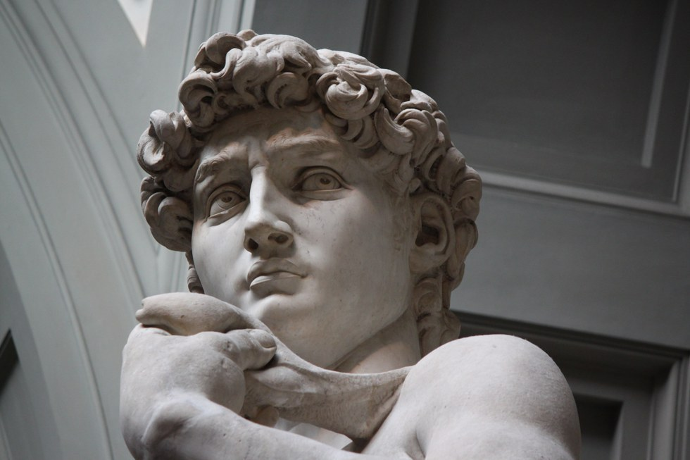 michelangelo david essay History has recorded that there are heroes who appeared before this time among these heroes come david in the ancient bablical records.