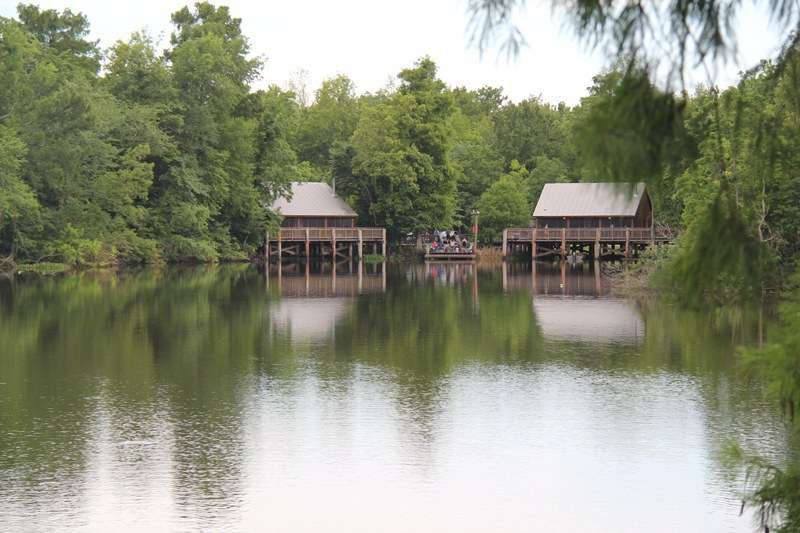 Day trips in louisiana for Lake fausse pointe cabins