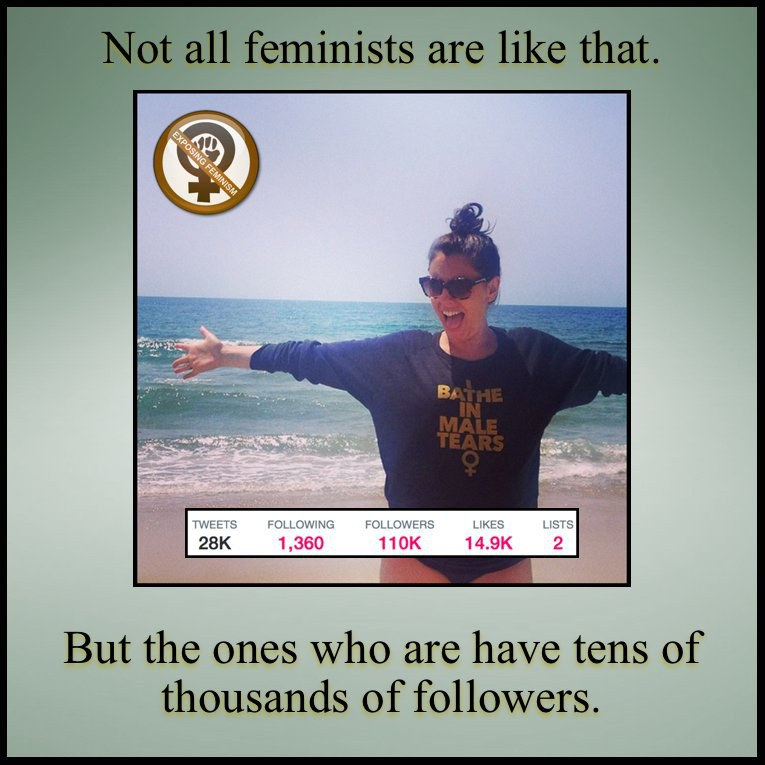 Feminism in a nutshell | Feminism, Equality and Anti feminist