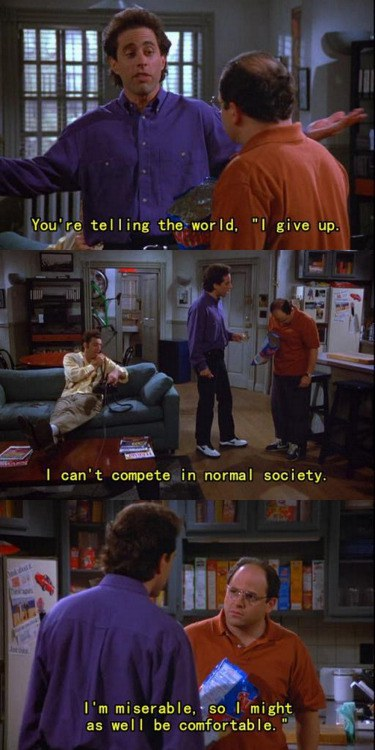 Seinfeld Quotes Stunning 10 'seinfeld' Quotes That Relate To The Stress Of Finals Week