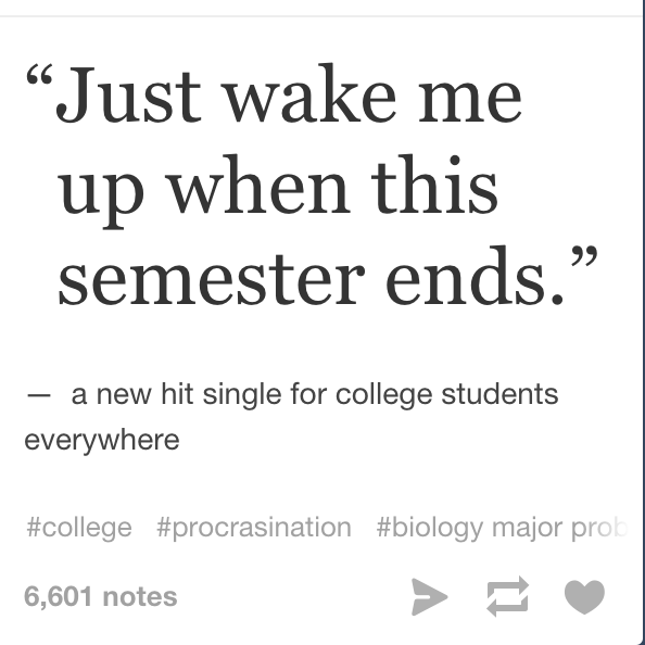 college life as told by tumblr posts finals struggle
