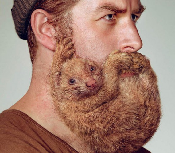 Dating site guys with beards