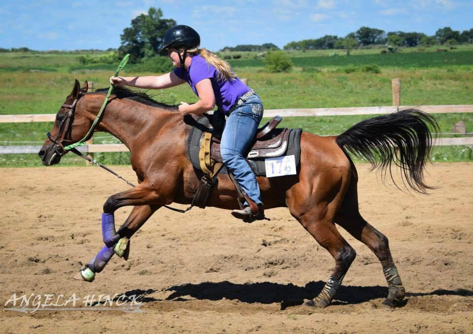A Thank You Letter To My Horse Trainer
