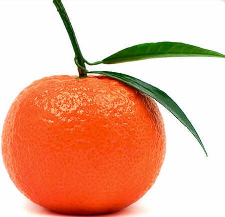 Anecdote 1 The Tangerine