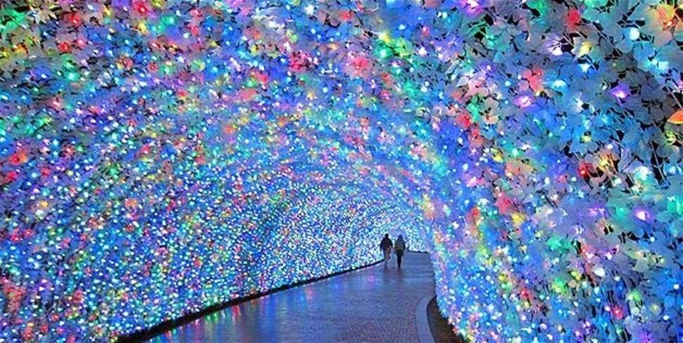 Japan Flower Festival a Winter Festival in Japan