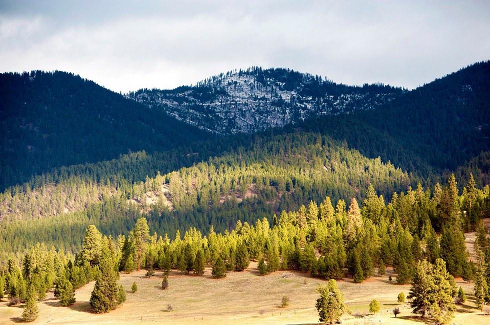 Mountains near Missoula, Montana