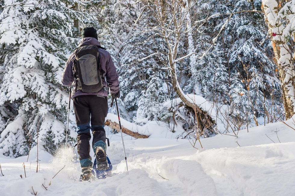 Person snowshoeing on trails in Quebec