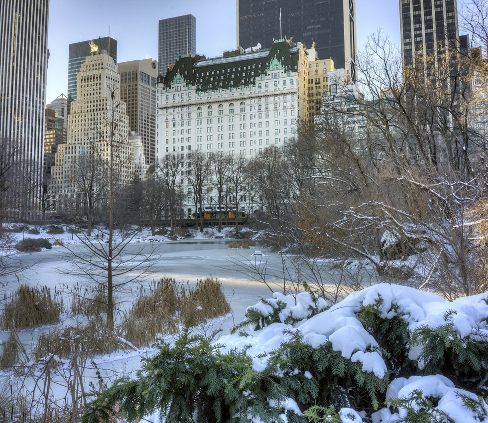 Central Park with the Plaza Hotel in the background