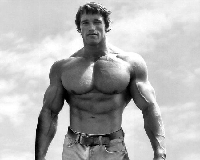 Arnold Schwarzenegger Hopped On Reddit To Inspire Guy