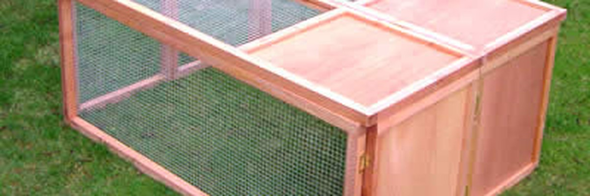 Zara_Khan - Guinea Pig Outdoor Hutches � What You Must Know