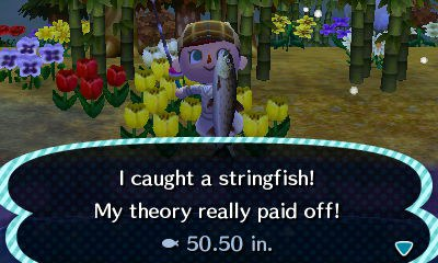 18 Reasons Why Animal Crossing Is The Best Video Game Ever